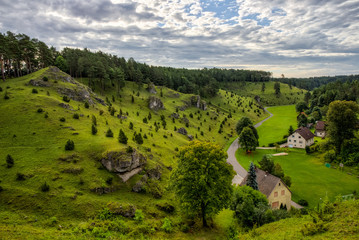 Juniper Slopes in Kleinziegenfeld Valley in Germany