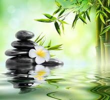 spa massage dans le jardin de frangipaniers et de bambou