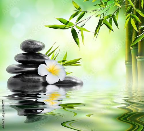 zabiegi-masazu-spa-w-ogrodzie-z-frangipani-i-bambusa
