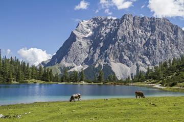 Seeebensee und Zugspitze