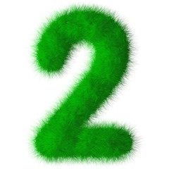 Green grass font number 2,eco font isolated on white background