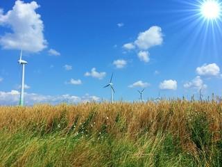 Windpark auf dem Lande