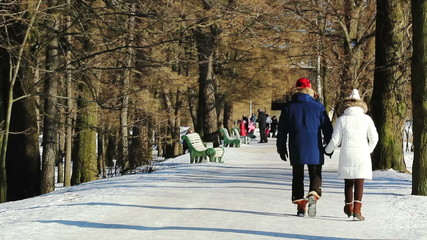 People walking in the park in winter