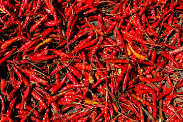 Background texture of chili