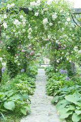 バラのアーチ バラ園 石畳