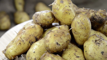 Portion of fresh raw Potatoes (loopable full HD video)