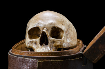 Still life with human skull are placed in old leather box