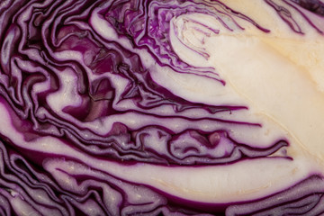 red cabbage, texture of cut red cabbage showing inside surface