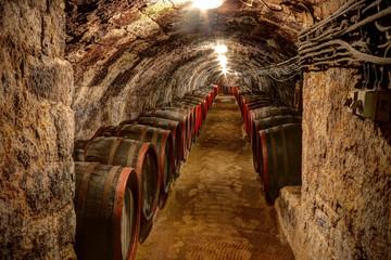 Wine cellar in Tokaj, Hungary