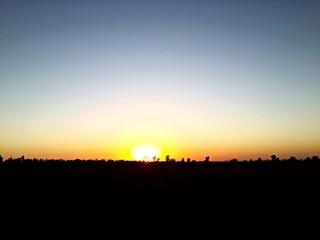 Sunrise at field