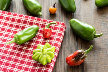Verschiedene scharfe Paprika