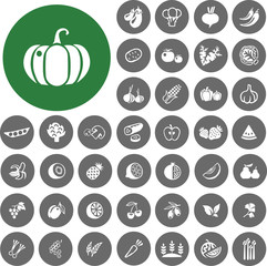 Vegetables and Fruits Icons set2. Illustration eps10