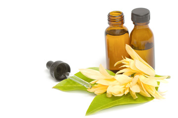 Essential aroma oil with champaka flower