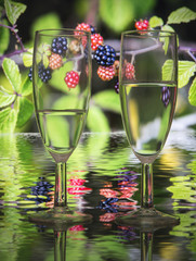 two glasses of champagne with a background of blackberries