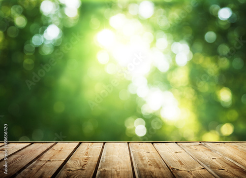 Foto op Canvas Bossen wooden surface and sunny forest