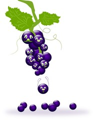 Funny grapes