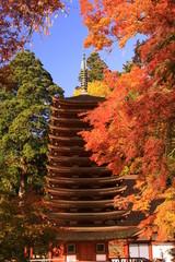 談山神社(奈良)の紅葉
