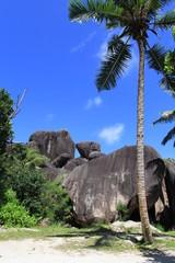 Rocher de la tortue, anse source d'Argent, Seychelles