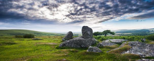 Granite blocks at Dartmoor national park