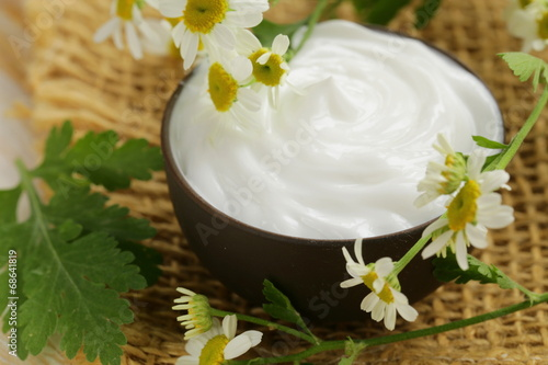 natural cosmetic cream lotion with green camomile - 68641819