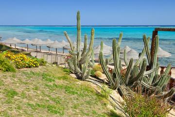 beach and sea in Marsa Alam, Red Sea, Egypt
