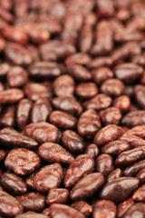 Sunflower grains in chocolate, close up