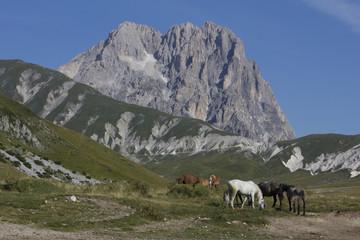 Massiccio del Gran Sasso d'Italia, Abruzzo
