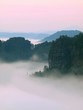 Autumn is comming. Pink cold sunrise in a fall misty valley