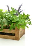 Fototapety Fresh herbs in wooden box