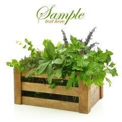 Fresh herbs in wooden box