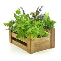 Fresh herbs in wooden box