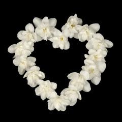 Heart Shape Made of White Jasmine Flowers on Black Background