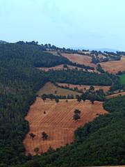 Campi coltivati delle colline toscane a Pitigliano
