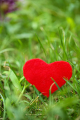 Small shape of heart on grass close-up