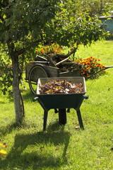 chores in the garden