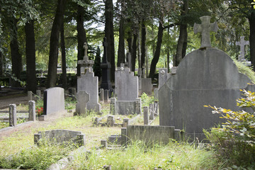 alter Friedhof in Holland
