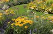 Blumenrabatte gelb-blau
