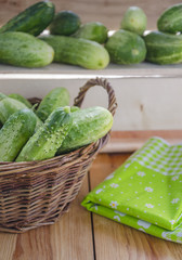 Fresh cucumbers with black pimples