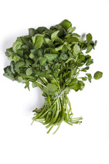 bunch of fresh watercress