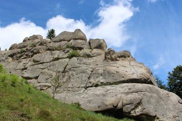 view to Carpathian mountains
