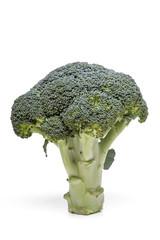 fresh and healthy broccoli vegetable
