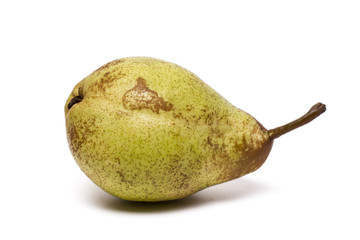 tasty rock pear