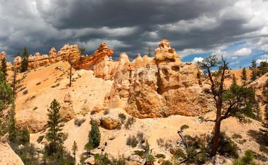 Mossy Cave Trail Hoodoos