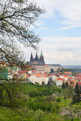 The view of spring Prague