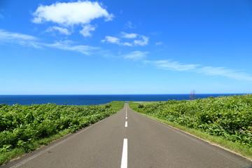 能取岬への道