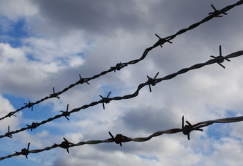 A close up of barbed wire against a cloudy sky
