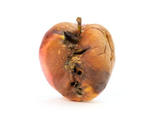 Old rotten apple with large DOF on white background