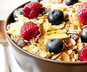 Muesli with Berries Closeup