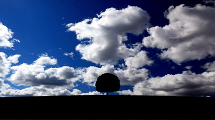 Alone lonely tree on skyline