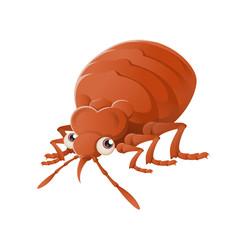 Bedbug